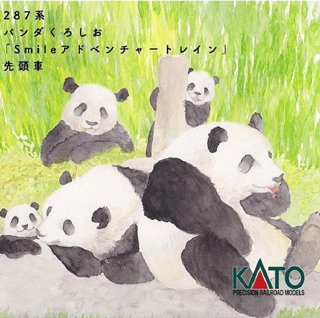 KATO Nゲージ 287系 パンダくろしおSmileアドベンチャートレイン6両セット 10-1506 鉄道模型 電車に関する画像8