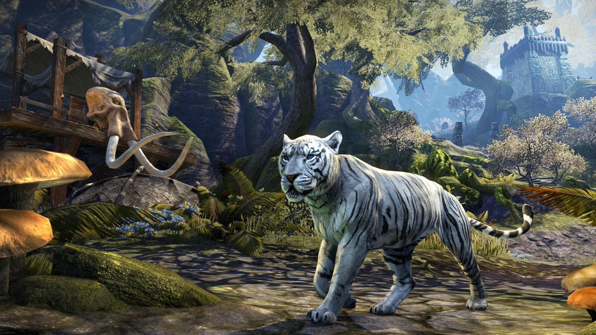 On the prowl for a new pet? The Moonlight Senche Tiger is 25% off, now until June 20 @ 10am EDT! Visit the #ESO Crown Store and add this sleek and silvery guardian to your pet collection today. beth.games/2JJi4NX