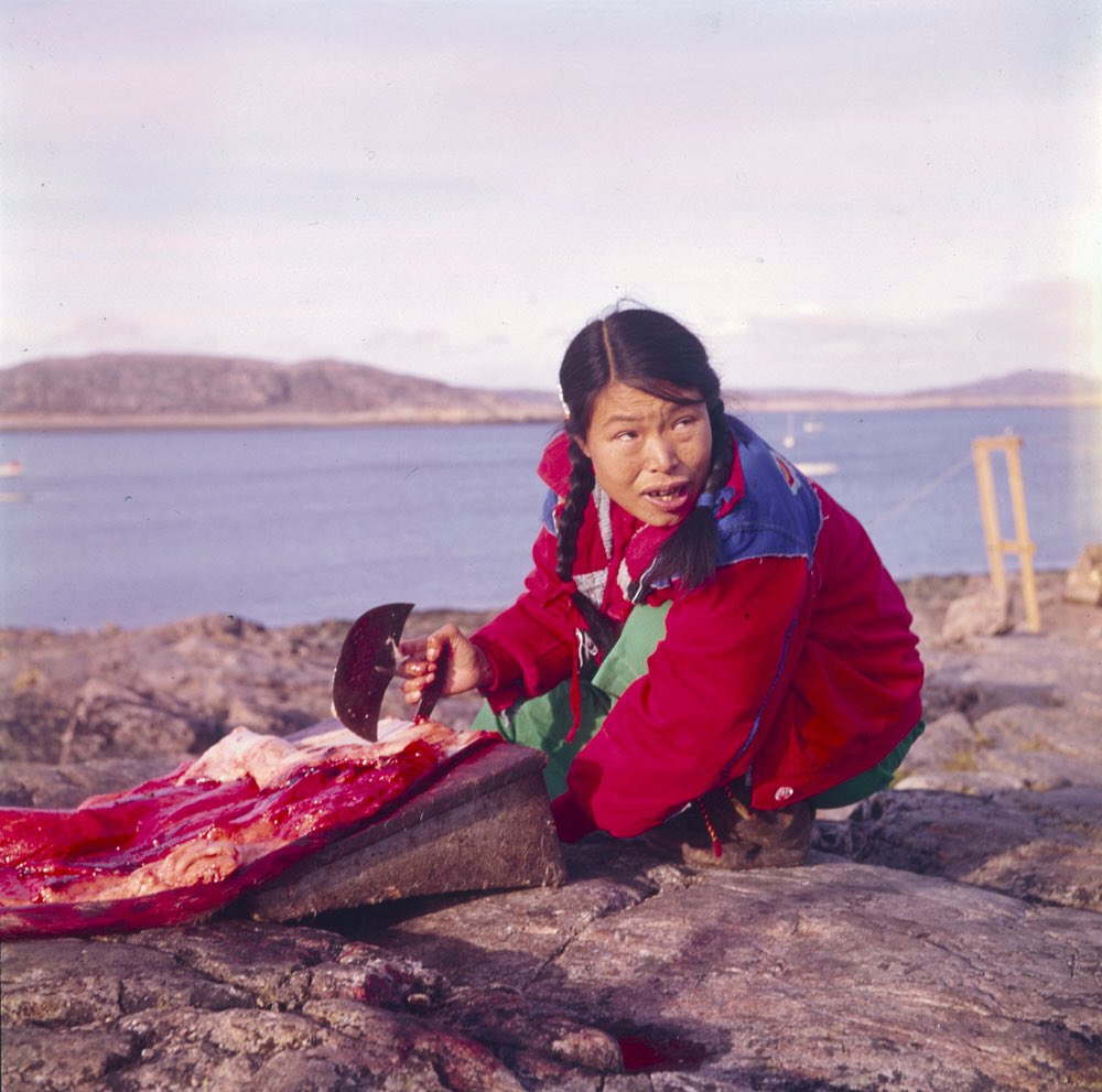 'Taktu cutting seal' ~ (Inuk) ~ Cape Dorset, August 1960 Photo: Rosemary Eaton [LAC]