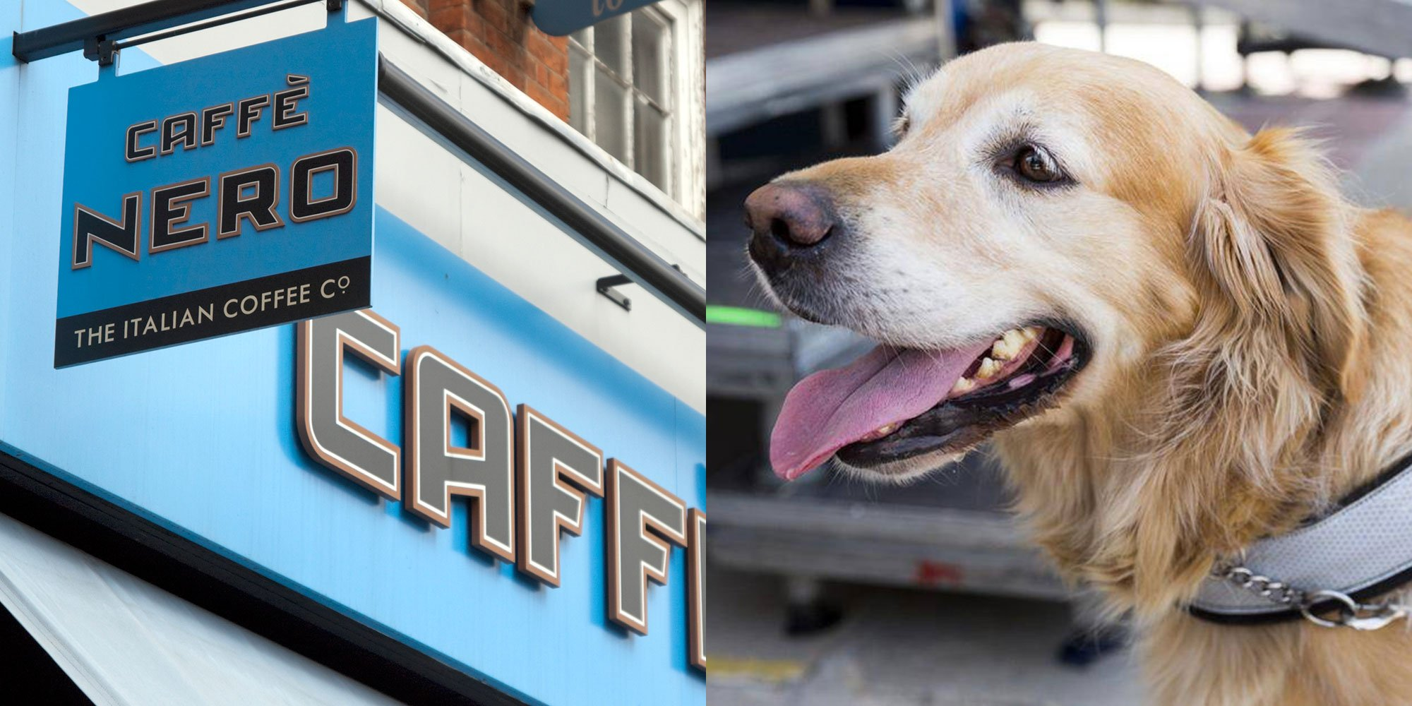 Caffe Nero 'refused to give a guide dog water' and people were furious https://t.co/oJKQFLwp8a https://t.co/Qv2L9dHCtY