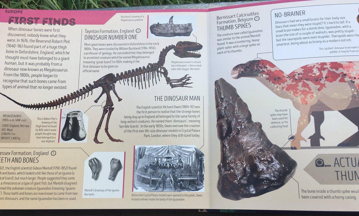Lot Of Small Dinasaurs B22 Animals & Dinosaurs