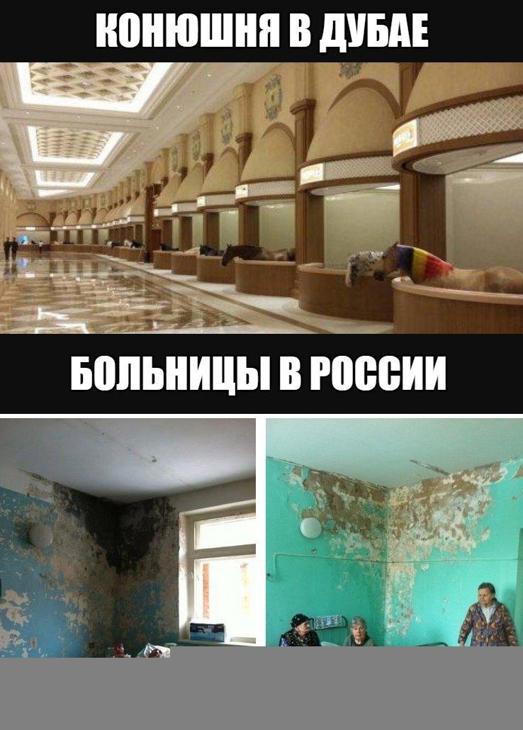картинка про дубай и россию изделия мясо