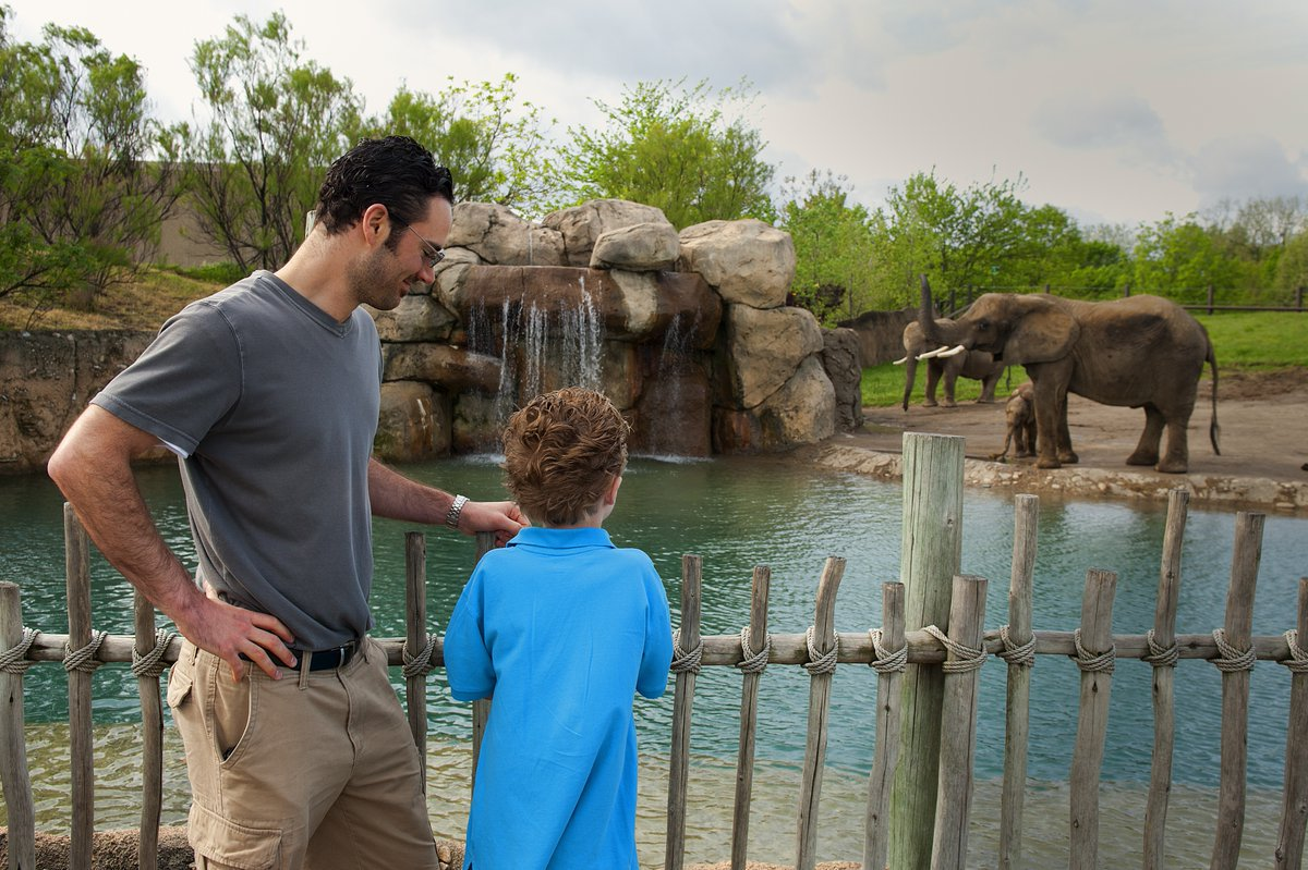 Happy #FathersDay! It's a great day to celebrate Dad at the @IndianapolisZoo. #Indy