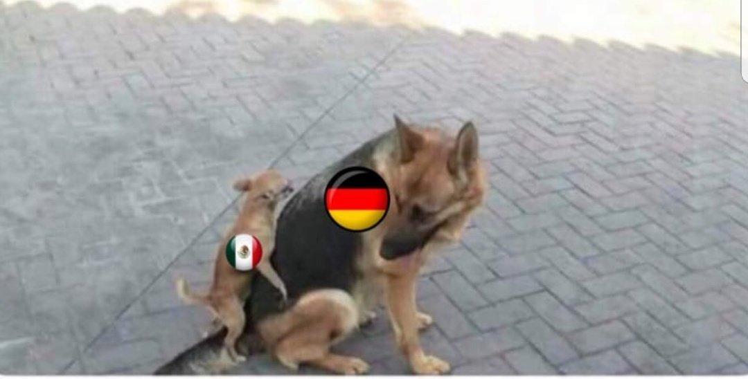 partido mexico y alemania