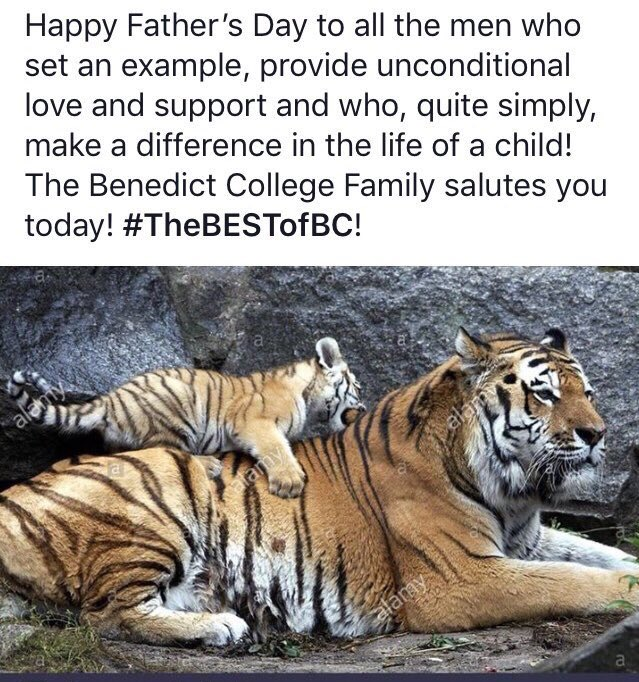 the child by tiger full text
