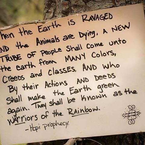 The #WarriorsOfTheRainbow Prophecy.  #Warriors For #MotherEarth &amp; All Her Children.  Read the story @  https:// bit.ly/2cyA9dV  &nbsp;  <br>http://pic.twitter.com/xjMORQLuoC