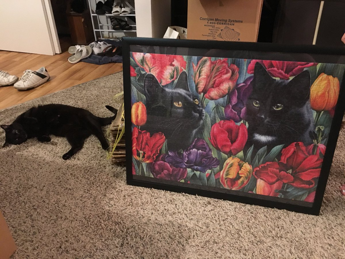 a fan sent me THE BEST JIGSAW PUZZLE EVER CREATED, i gave it to my dad cause he loves puzzles and he framed it for us, IT'S EFFIE AND SOPHIE