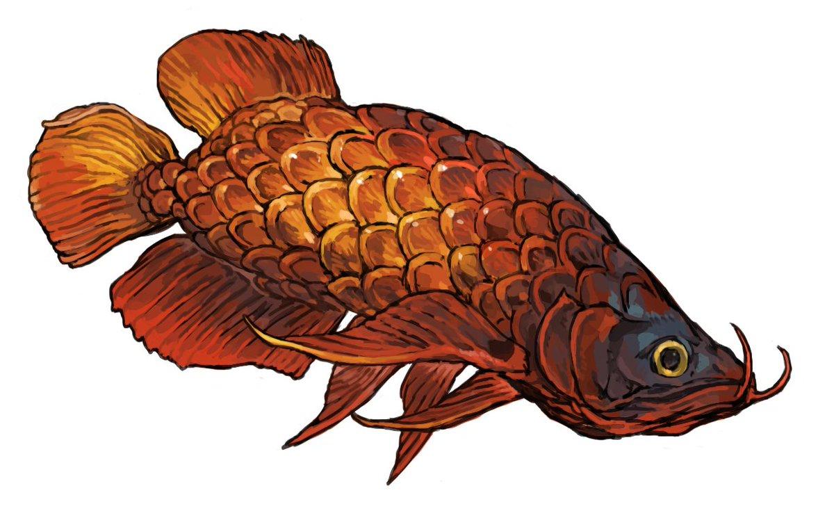 pixivFANBOXで魚の絵を公開しました! #pixivFANBOX pixiv.net/fanbox/creator… 魚の絵を描きました 誰でも見れます!