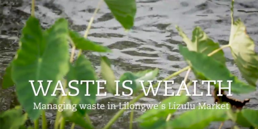 See how a small group of women from Lilongwe, Malawi, are turning #waste along the #LilongweRiver into wealth:  https://t.co/L0eM0c151Z  Read more about our #UNARivers project here: https://t.co/vAmtDubQN4