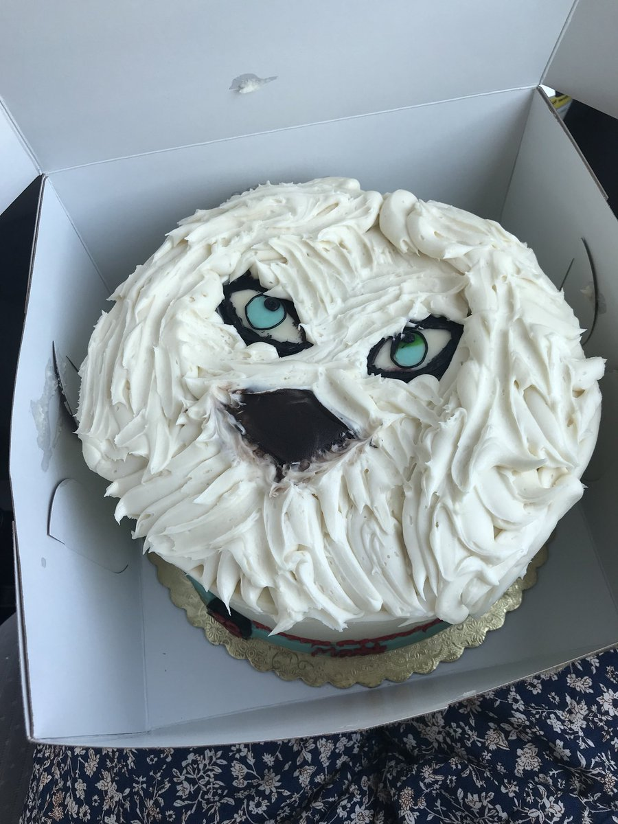 I Got MattyHip A Birthday Cake And Am DYING Please Tell Me How This At All Resembles Our Dog FAILpictwitter 8q86DICpPK