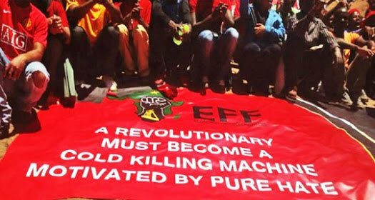 Image result for malema racist banners