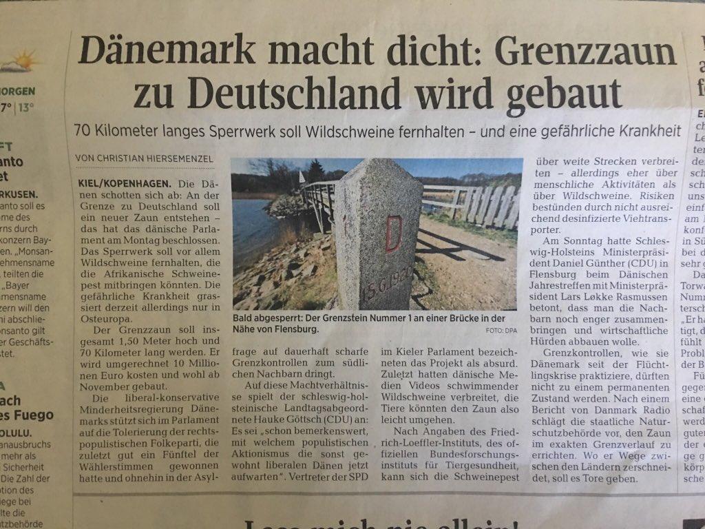 Baut Danemark Grenzzaun Nur Wegen Wildschweinen Aus Deutschland