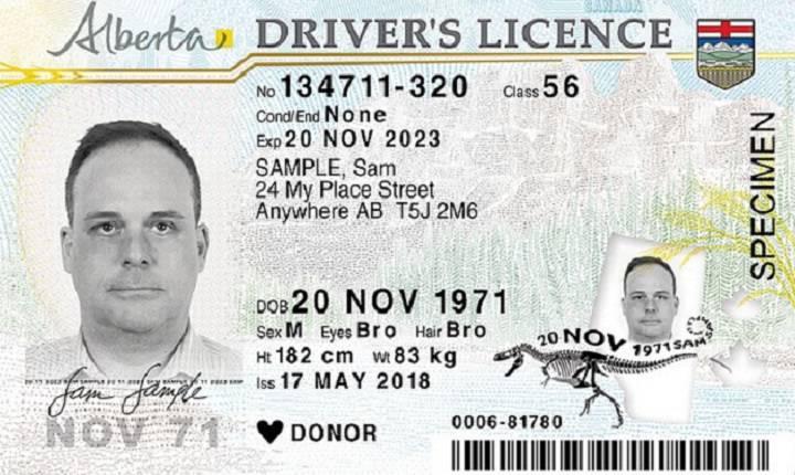 Licenses Cjay Twitter krysoncjay… Alberta Out - Dinosaur Driver's