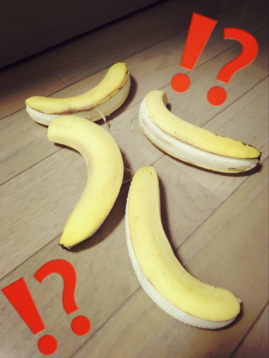 朝起きたらバナナが落ちてた…  そんなバナナ!!!!!!!
