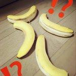 いや、こんなことある?!w朝起きたらつり下げてたバナナが落ちてた