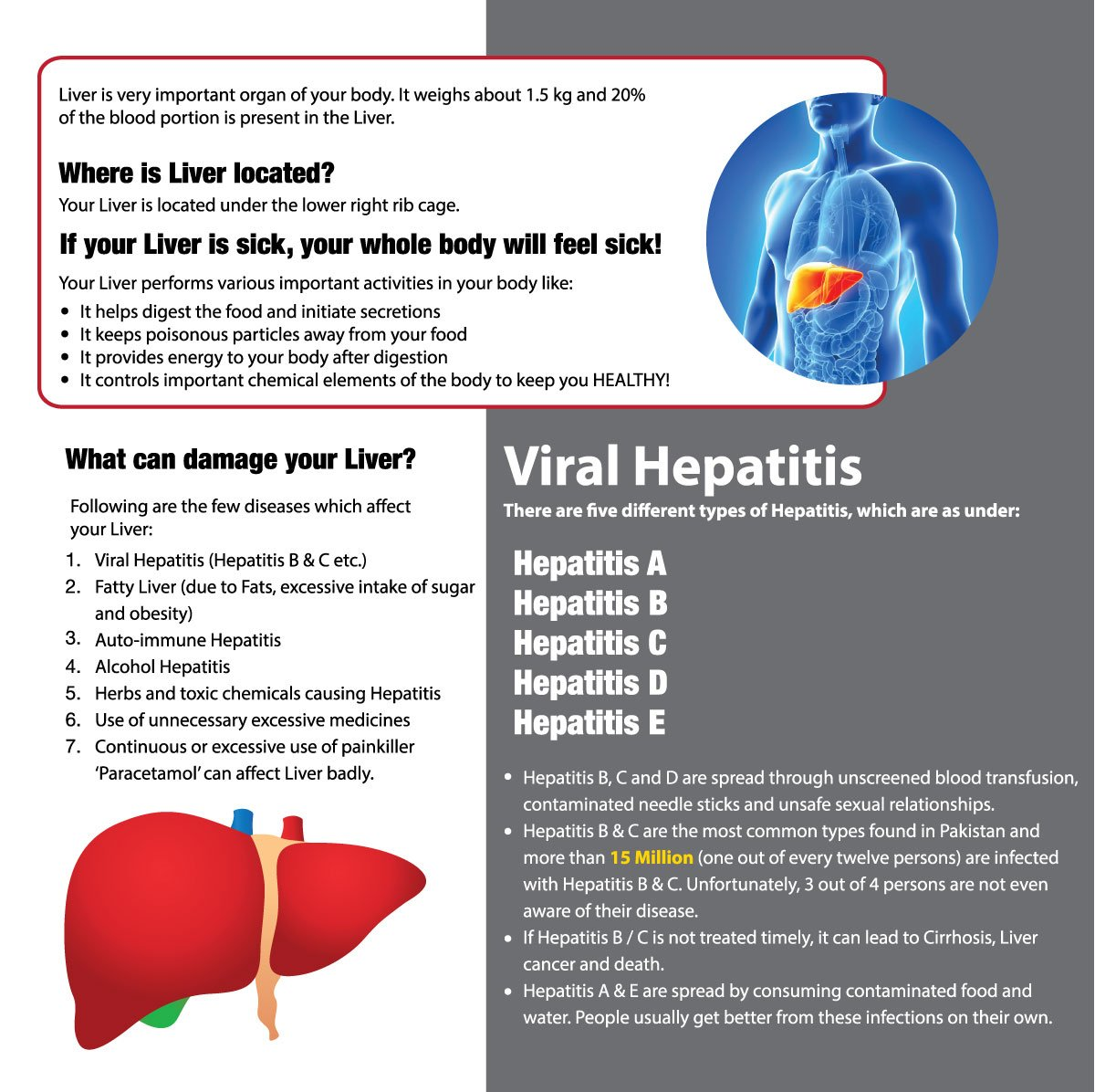 Pklirc On Twitter Health Corner Liver Liver Is Very Important