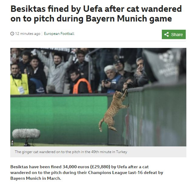 Besiktas fined £29,880 for a cat running on the pitch.  Russia fined £22,000 for racism.