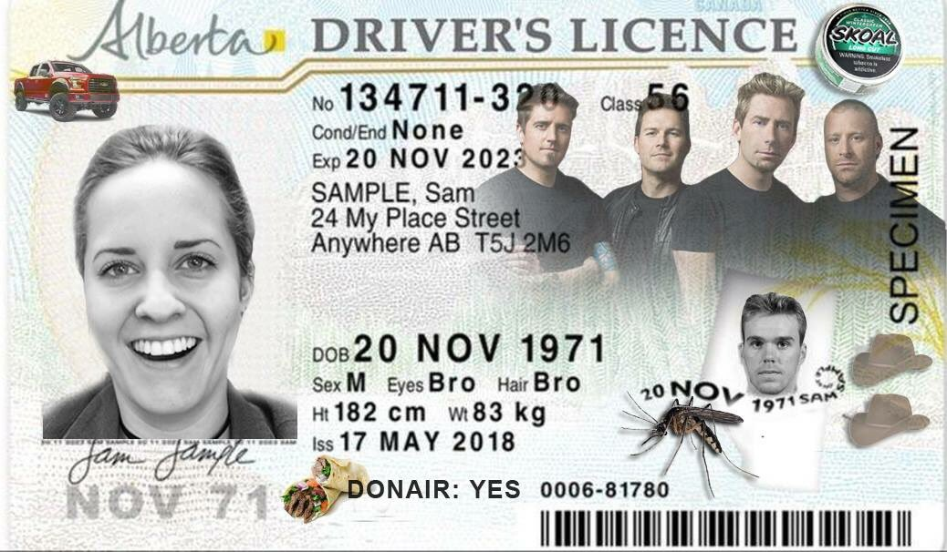 Rejected Licence They The yeg Sadly Might've Https A For alberta… Rex Design New co Driver's aplbpcyzse