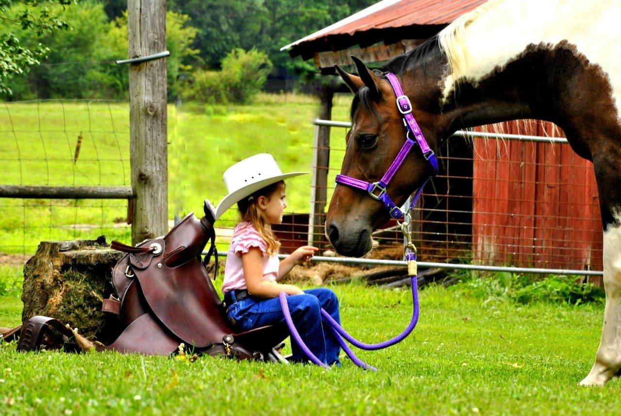 узнали, удачных выходных картинки с лошадьми роспись характерными