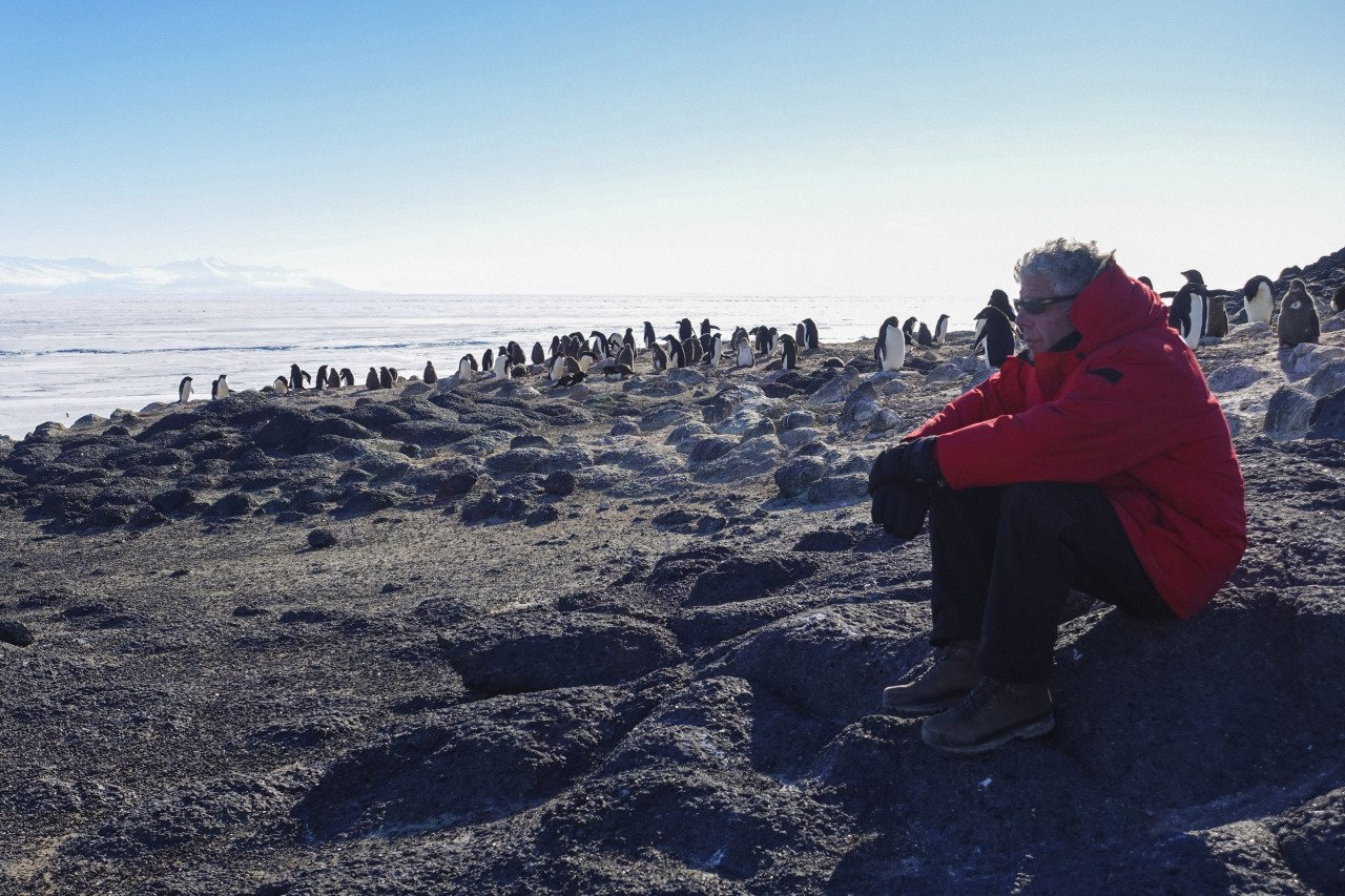 Reloaded twaddle – RT @AntarcticReport: RIP Anthony Bourdain 1956 – 2018; last year he visited #Ant...