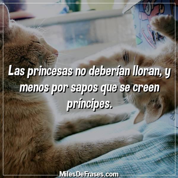 Frases En Imágenes On Twitter Las Princesas No Deberían