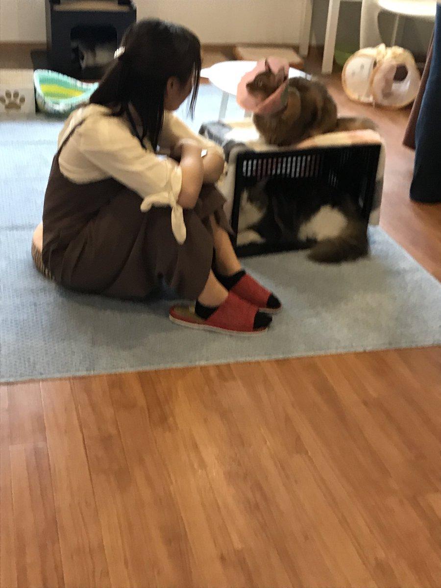 長谷川優貴さんの投稿画像
