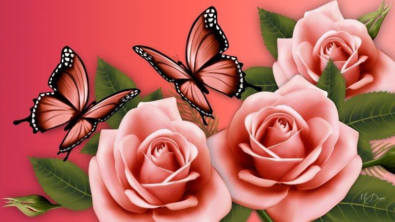 Днем рождения, открытки бабочки розы