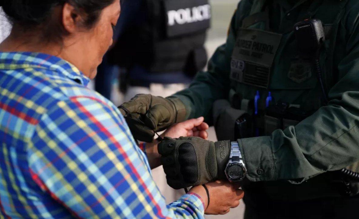immigration agents arrest 114 - 1184×722