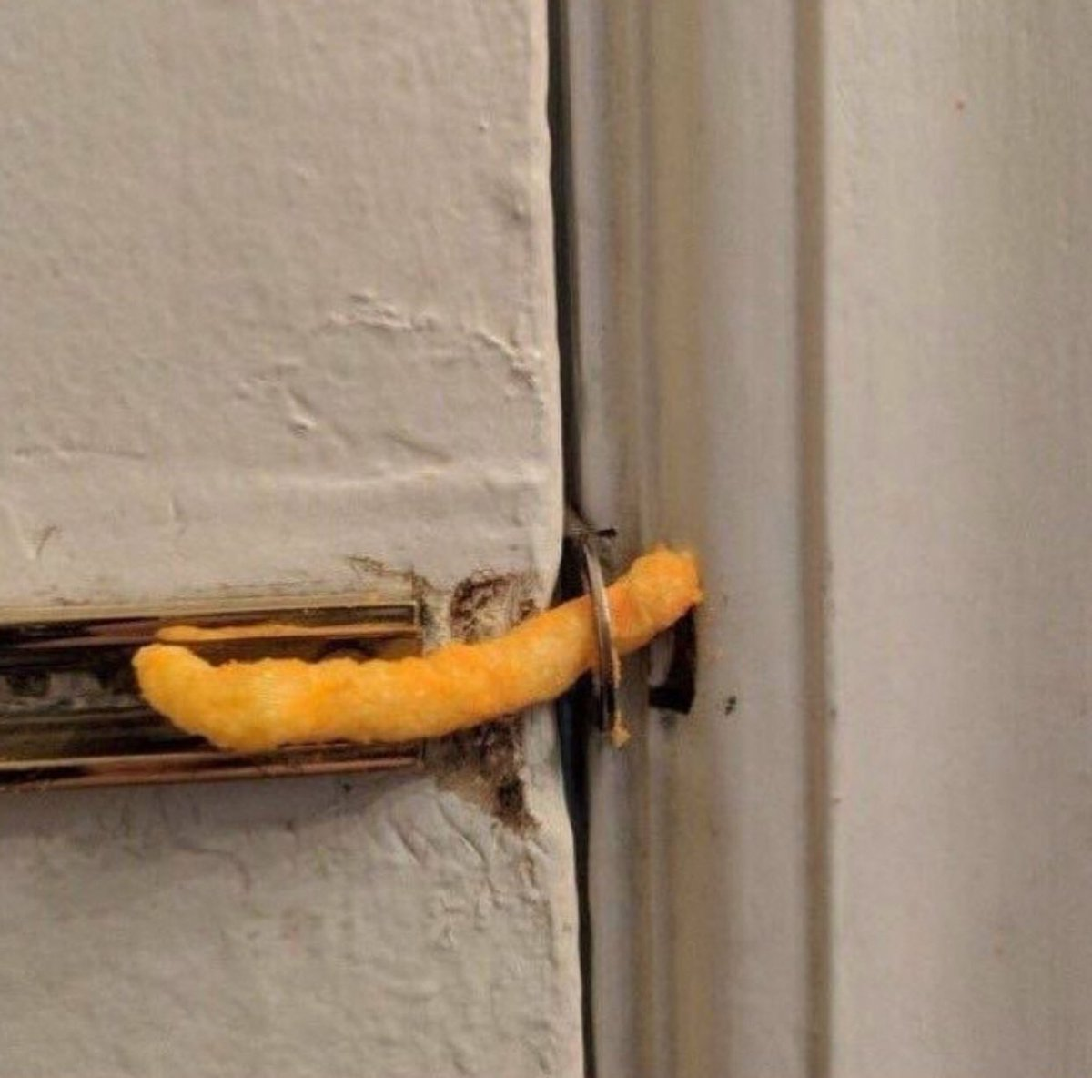 this is how much effort i put into protecting my own heart from people with bad intentions