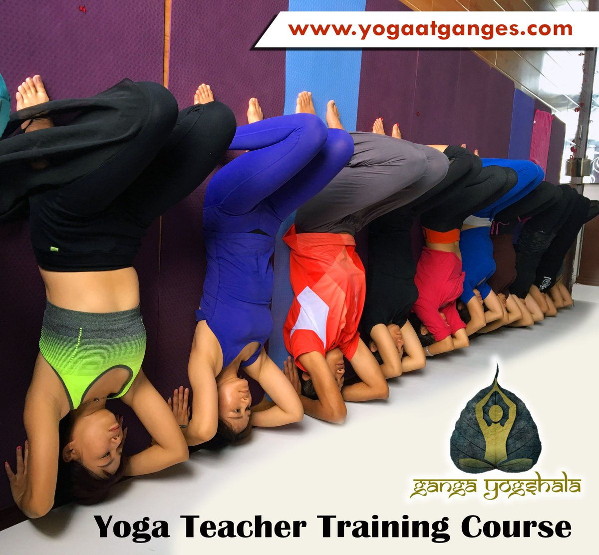 #200_hour #yoga #teacher_training_course program which is overlooked by the expert #yogis. it is one of the #professional as well as personal #development opportunities for the #students. #rishikesh is a place which is known for the soulful experience it offers to the travelers.