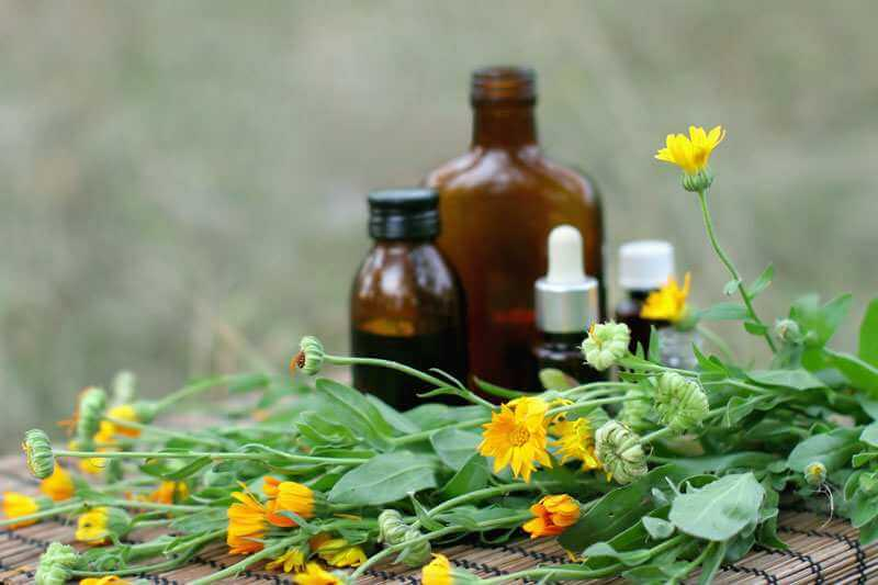 The Energetics of Health: A Naturopathic