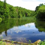 Toadsmoor Lake on walk over. Will it be as sunny for the 12 mile walk on the 27 June. Join us and find out.