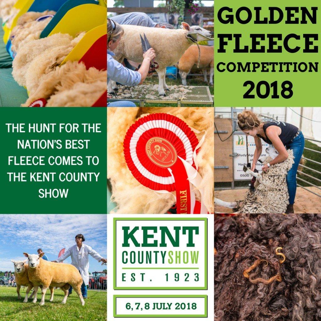 Competition Golden Fleece 2019 62