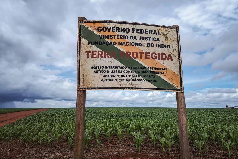 Terras indígenas foram invadidas com soja transgênica, conclui Ibama https://t.co/0ESYThcyVw