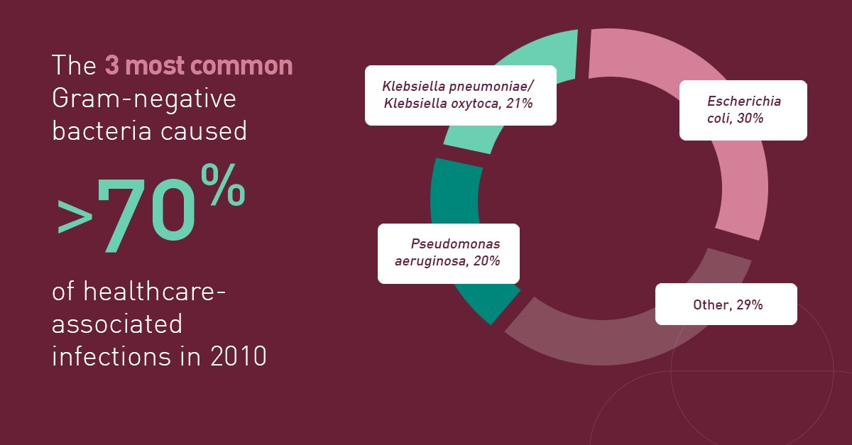 """Merck on Twitter: """"Learn more about the three most common Gram-negative  bacteria that cause healthcare associated infections. #ASMicrobe…  https://t.co/AtZehH2Ckl"""""""