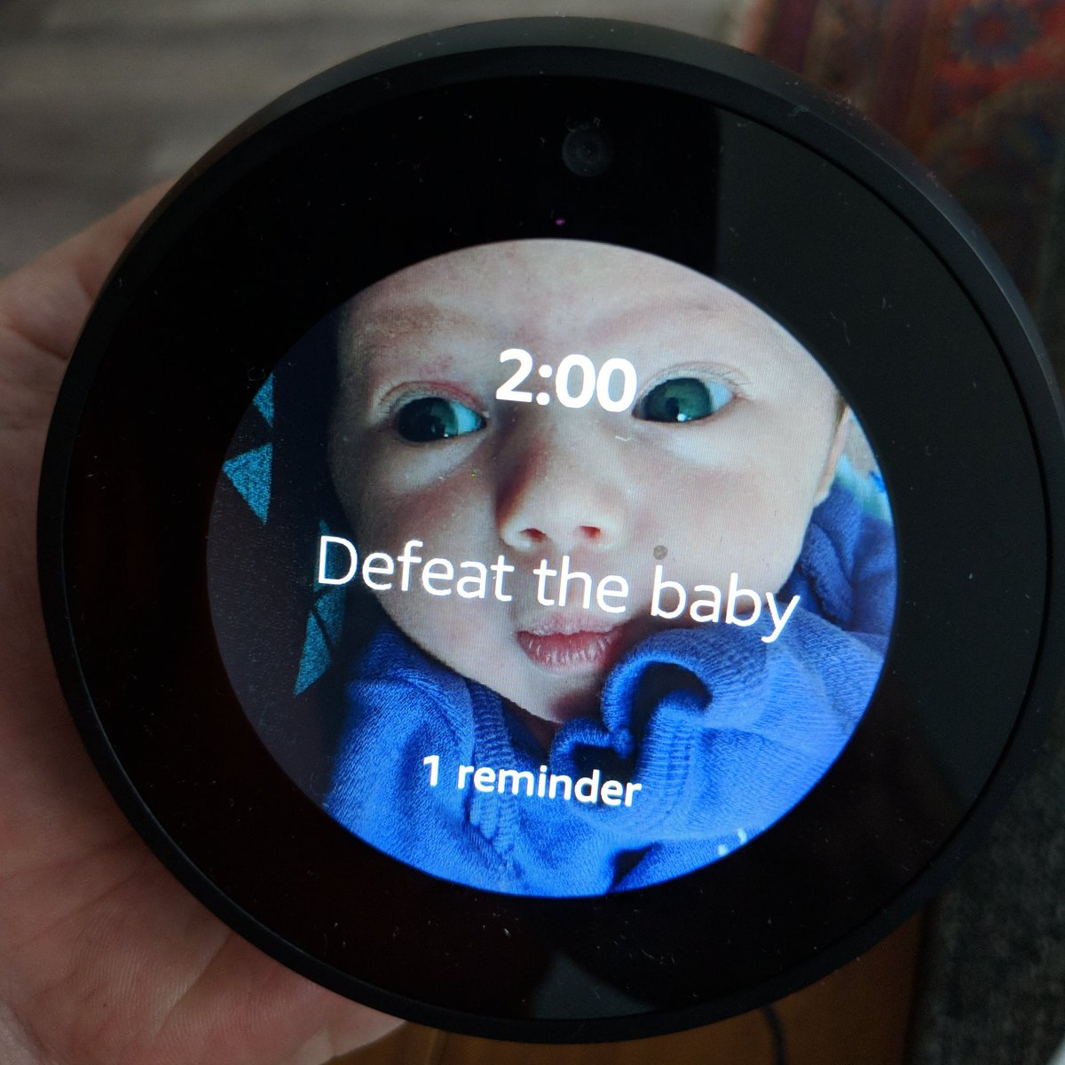 RT @yipe: Alexa: remind me to feed the baby https://t.co/p3sEUcTgYa