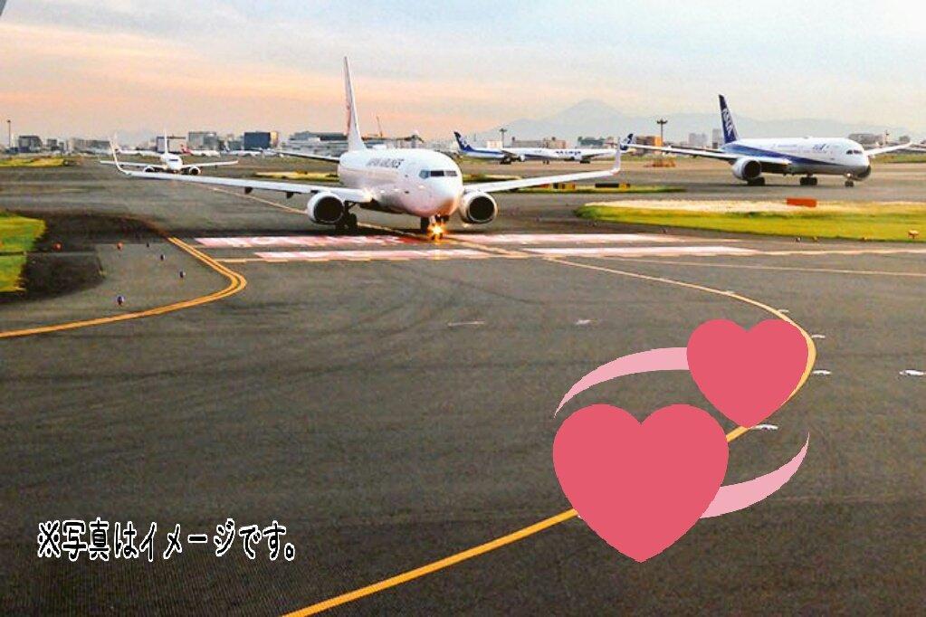 遠距離恋愛を支える恋の往復航空券