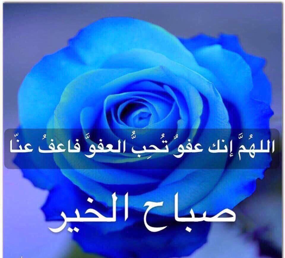 اللهم إنك عفو تحب العفو فاعف عنا Vip2099