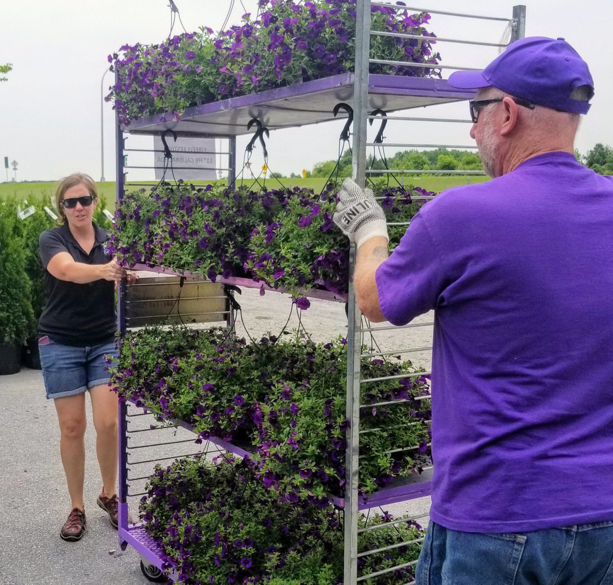 Bell Nursery On Twitter Bell Along With Retail Partner Home