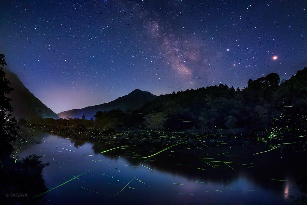 蛍の川と天の川。 夜更けに月が西へ傾くと、草の陰に身を潜めていた蛍たちが川面をすべり、にわかに光でいっぱいの川となりました。まるで宮沢賢治さんの「銀河鉄道の夜」の世界。 (以前岡山県にて撮影)