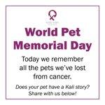 Image for the Tweet beginning: Happy World Pet Memorial Day!