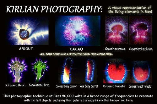 Kirlian Photography Using Electrography Or Electrophotography Techniques Also Used In Medicine Research Notice The Purple Ultraviolet VioletCrown Chakra