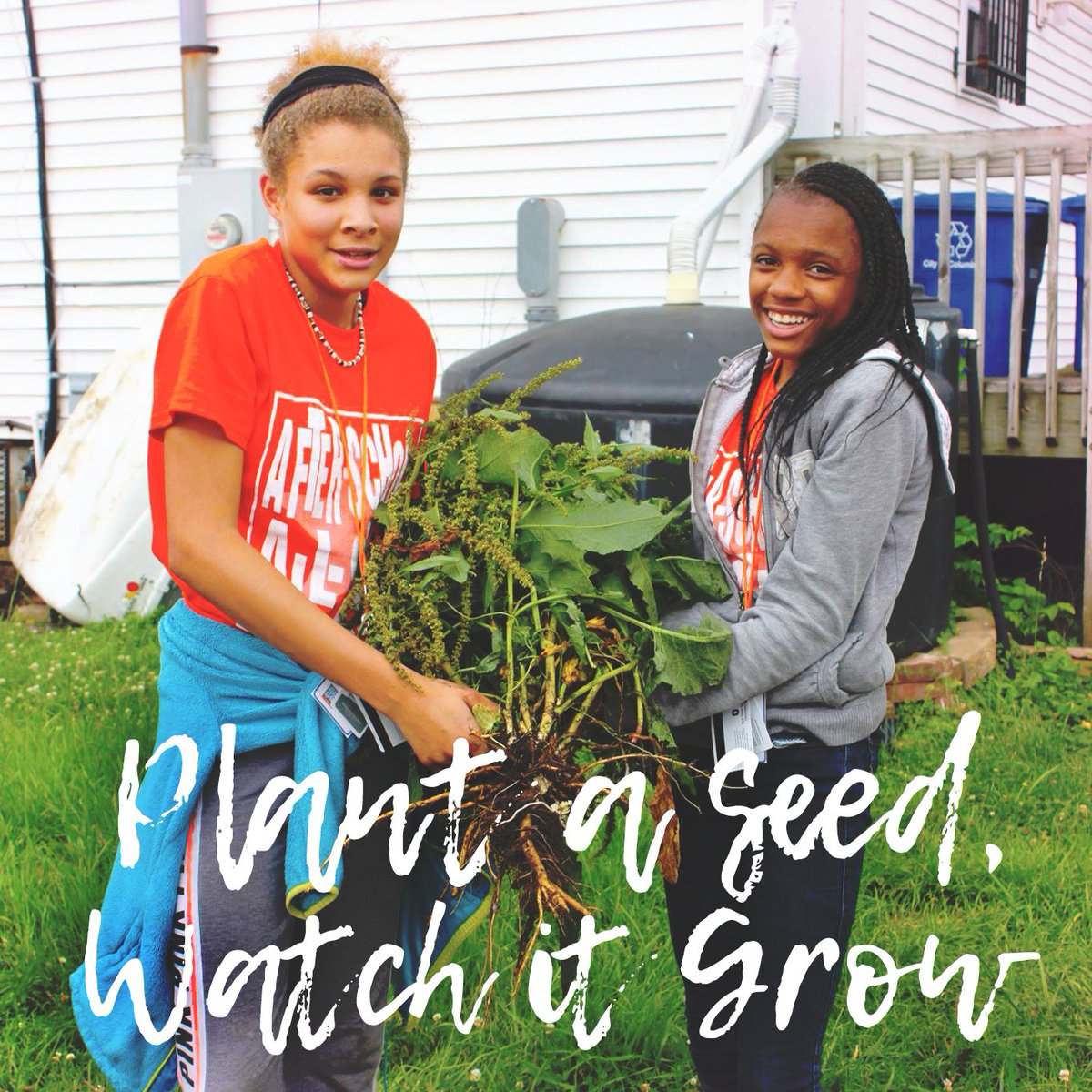 We Want Our Kids To Know That Healthy Growth Takes Time, Patience, And Care  So That They Can Apply This Knowledge To More Than Just Gardening.