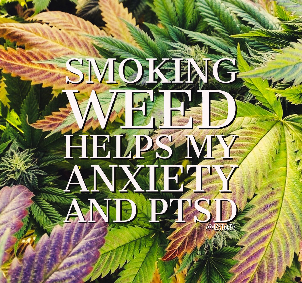 """mz stoned✨ on twitter: """"smoking weed helps my anxiety and ptsd"""