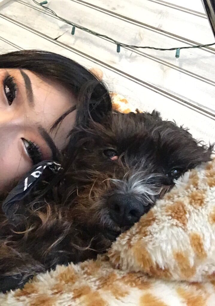@humanstoadore hello from me and my doggo