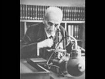 download Sfântul Ioan Gură de Aur: Comentar la Evanghelia de la Ioan