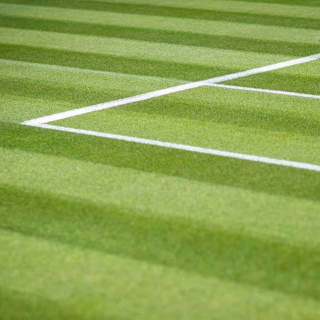 The clay court season was a pleasure to watch...but now it's time for grass 🌱  #Wimbledon #MondayMotivation