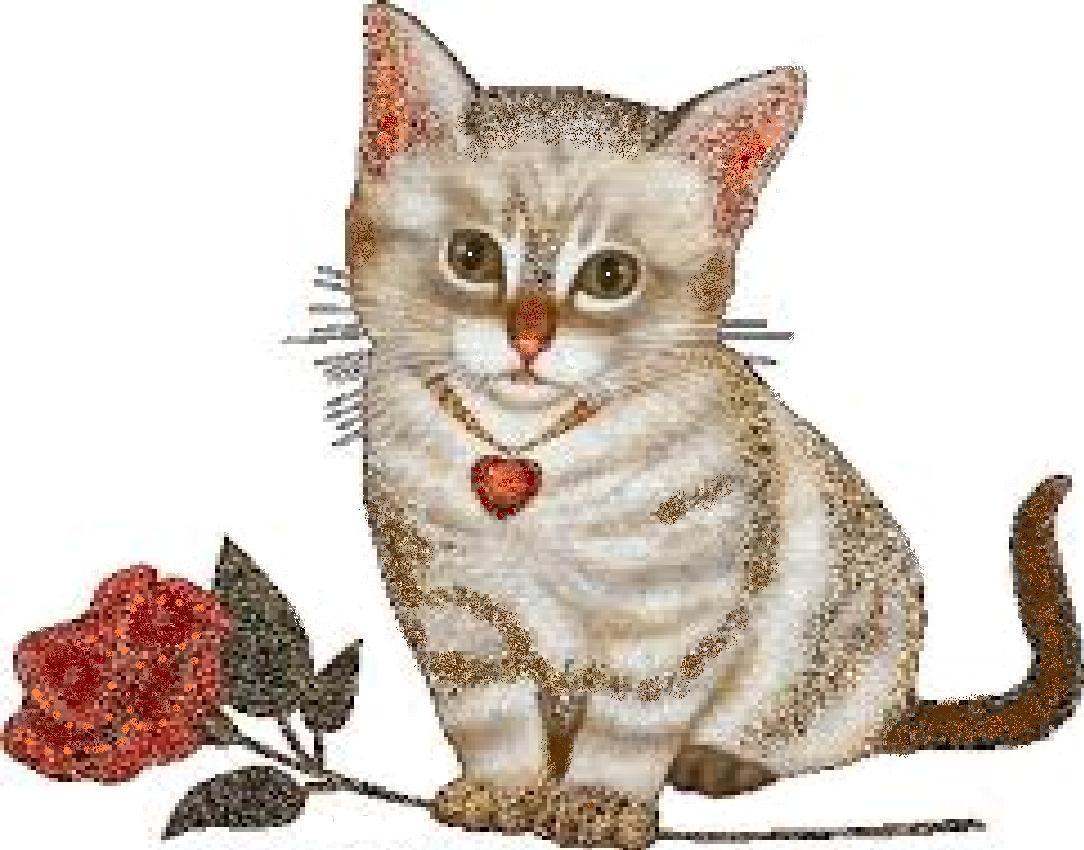 Анимация кошек
