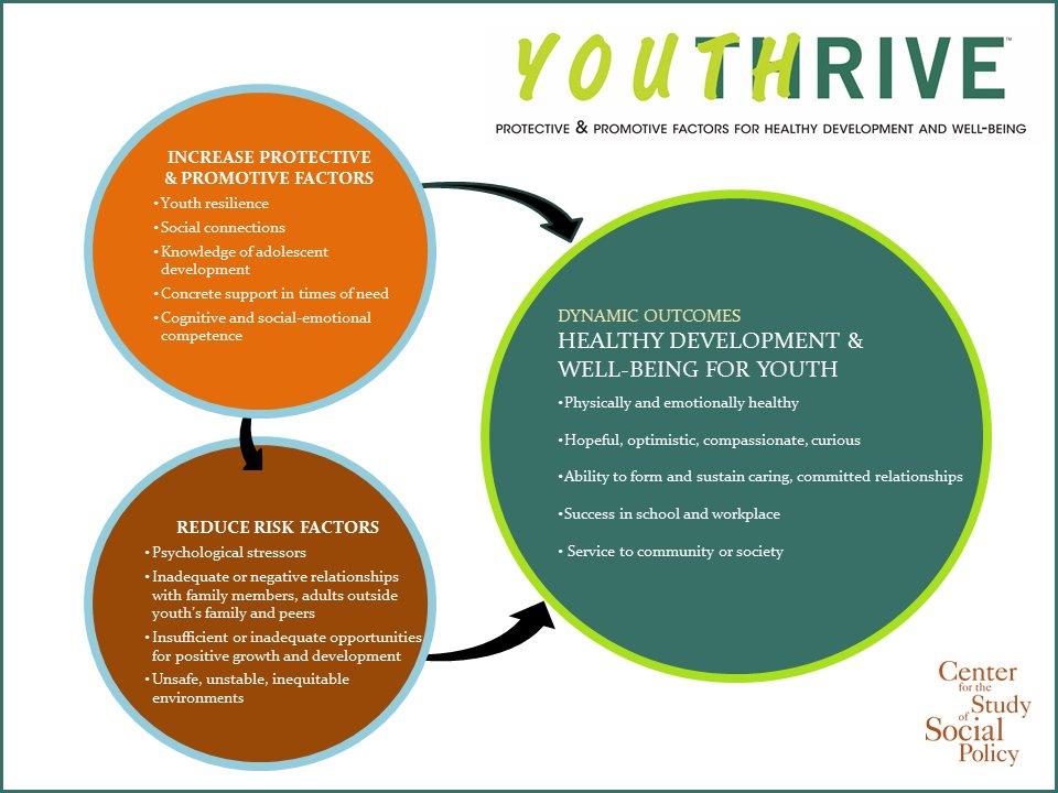 download Survivalguide PiA: Die Psychotherapie Ausbildung