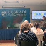 Image for the Tweet beginning: .@Uudenmaanliitto Johanna Juselius presenting Helsinki-Uusimaa